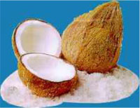 mesin-pemarut-kelapa-maksindo produk mesinbekasi