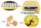 Jual Mesin Penetas Telur Otomatis 48 Butir – AGR-TT48 di Bekasi