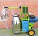 Mesin Pemerah Susu Sapi Akan Membantu Mempermudah Proses Pemerahan